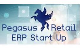 Pegasus Retail ERP Start Up