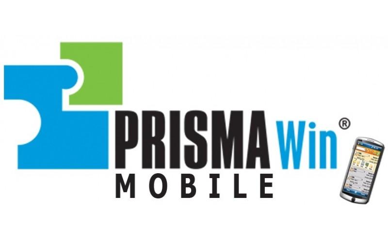 Megasoft PRISMA Win Mobile